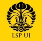 LSP UI